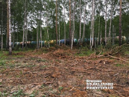 Больше не стоит: как лишали природной силы село под Первоуральском