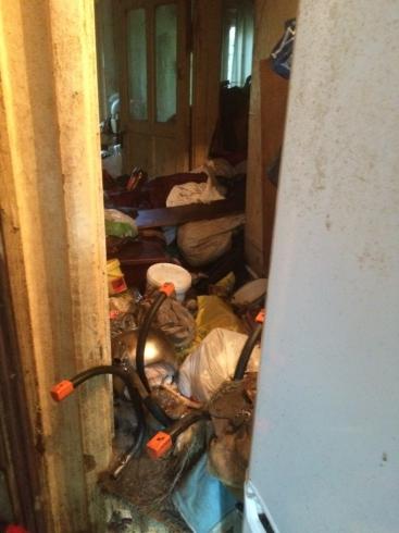 В Екатеринбурге одинокая пенсионерка-собачница отравляет жизнь целому дому